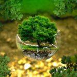 Aloha Ecology: gli esperti per la gestione dei rifiuti