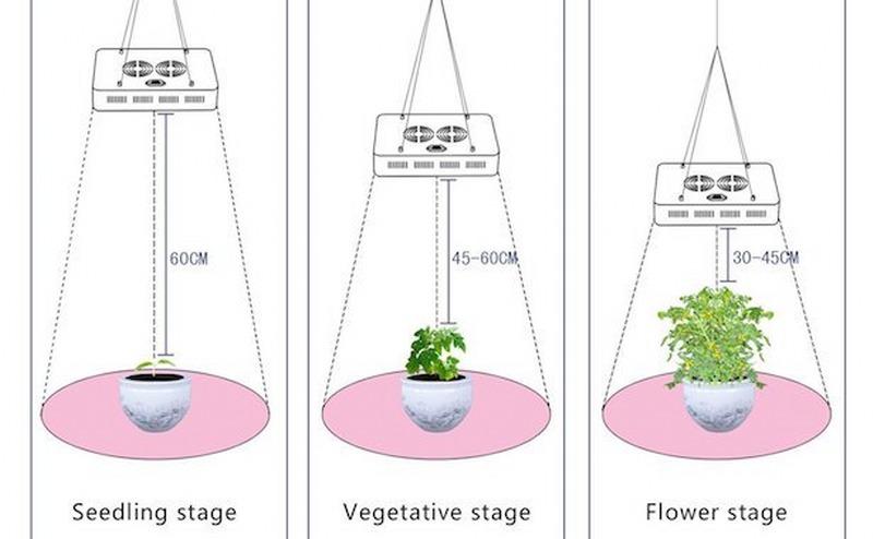 lampade-per-piante_800x494