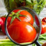 Labeling ed Etichettatura degli alimenti: applicazione e normativa
