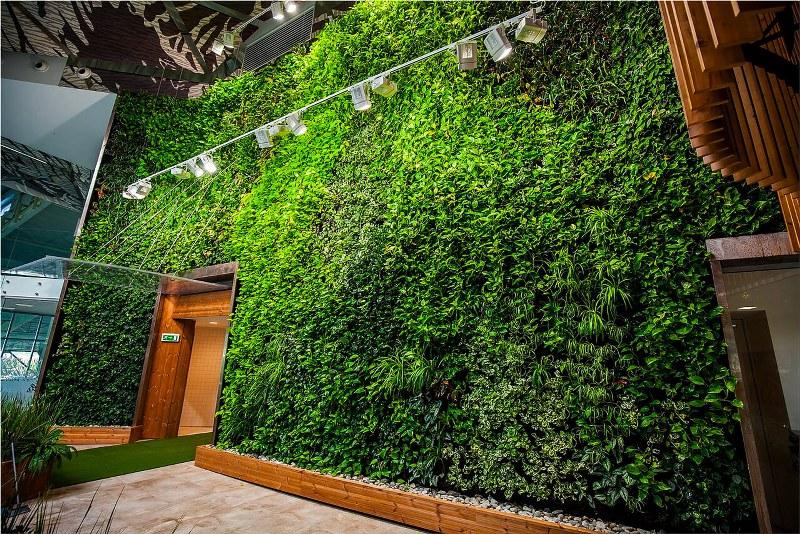 come creare dei giardini verticali indoor top audio