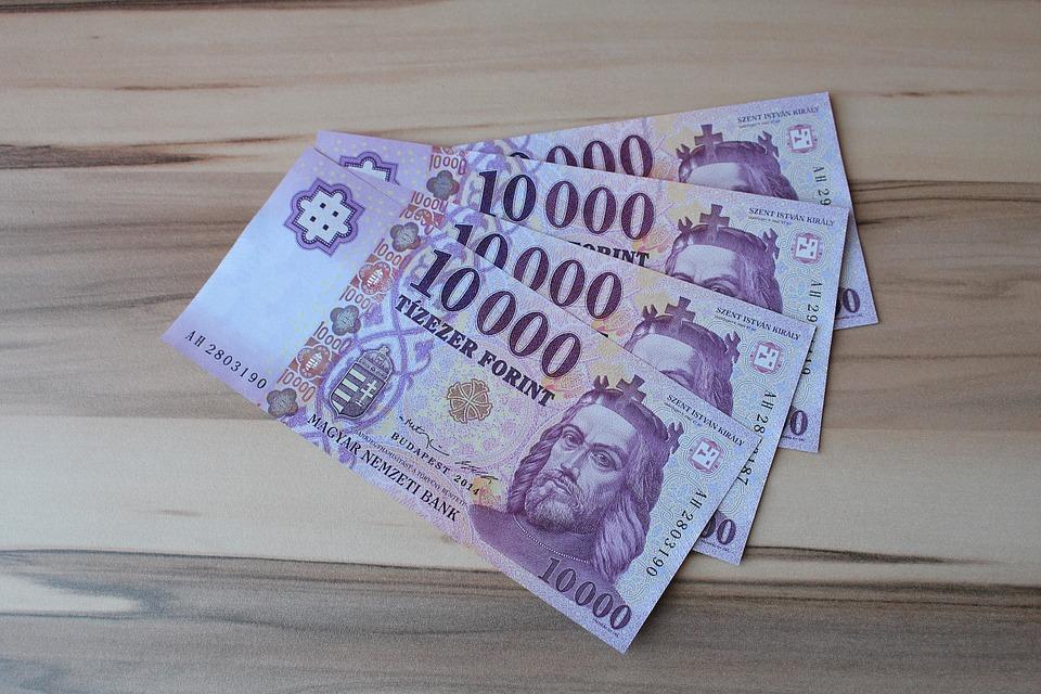 Cambio euro fiorino ungherese dove conviene | Top Audio ...